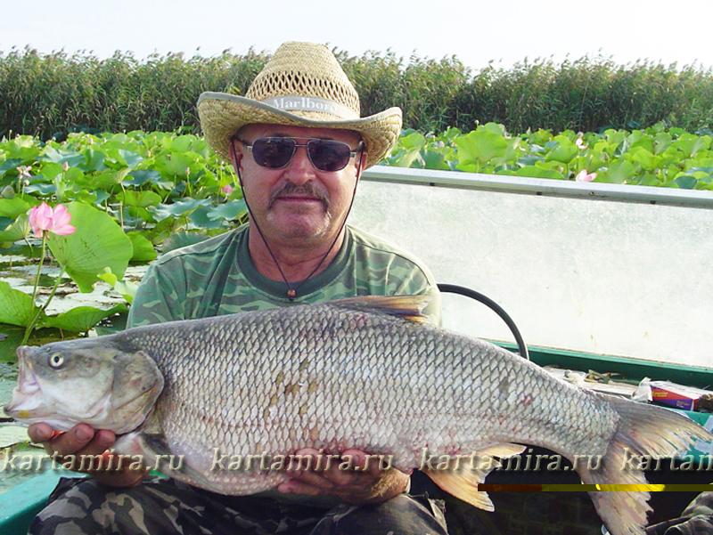 рыбалка в астрахани на реке кигач в астрахани