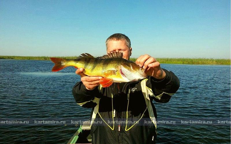 рыбаки костанайской области