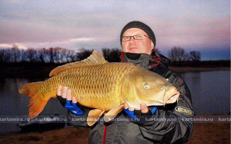 ловля рыбы осенью на волге