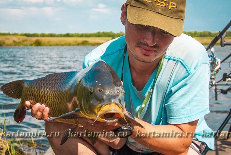 рыбалка на куме весной