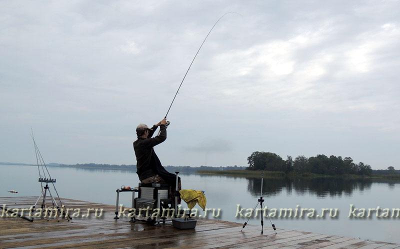 ловля плотвы на псковском озере